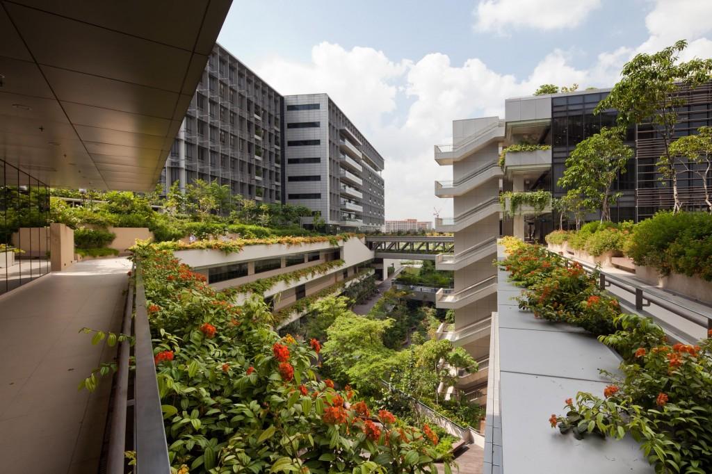 The Architect S Perspective Khoo Teck Puat Hospital Rmjm