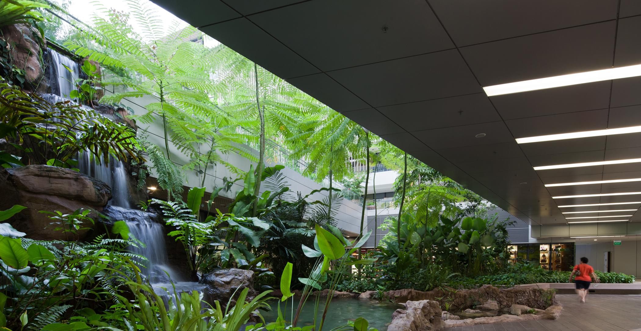 Low impact development technologies revolutionising design for Home garden design singapore