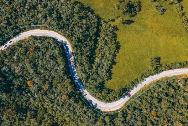 birds eye view of twisting road through woodland